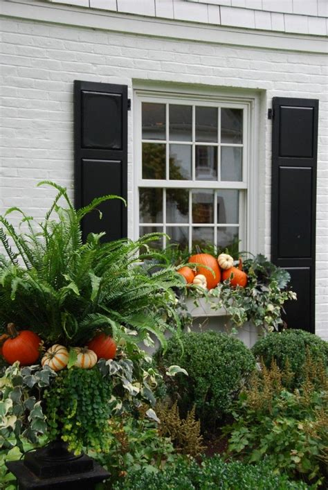 fall window boxes best 25 fall window boxes ideas on fall