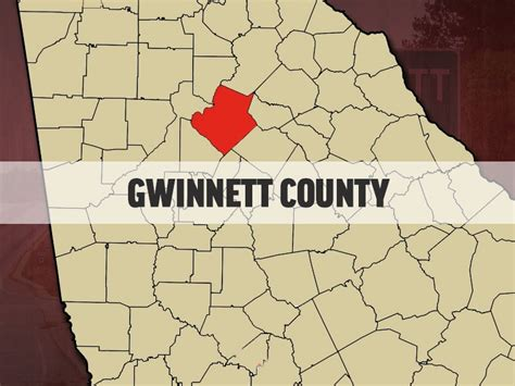 Gwinnett Property Records Gwinnett County Offers Free Adoption For Barn Cats Accesswdun