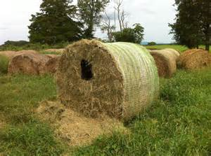 hay bale blind bale blind plans related keywords suggestions bale