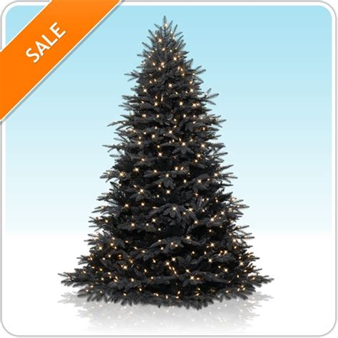 black christmas trees for sale lizardmedia co