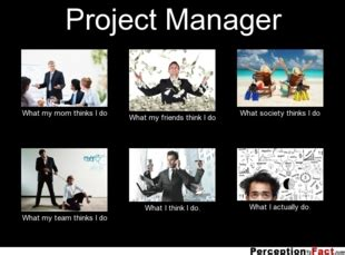 Project Manager Meme - perception vs fact what i think i do what i really do