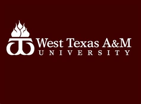Wtamu Mba by West A M Mba Healthcare Term Care