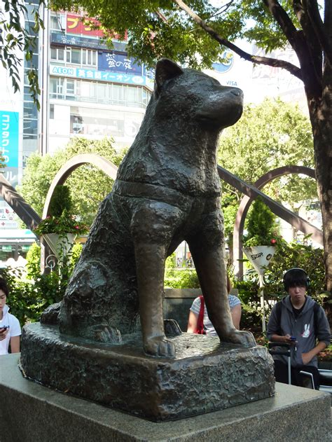 hachi the famed hachiko s home city wants loan of much loved statue the japan times