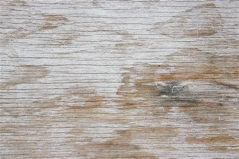 Textured Floor Paint For Wood   Gallery of Wood and Tile