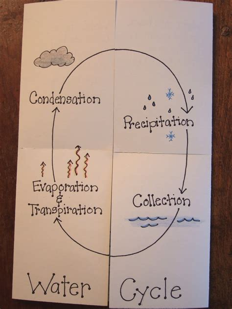 water cycle foldable template the inspired classroom about to start weather