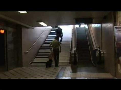 scala mobile per disabili parco ventaglieri in funzione scale mobili e ascensore