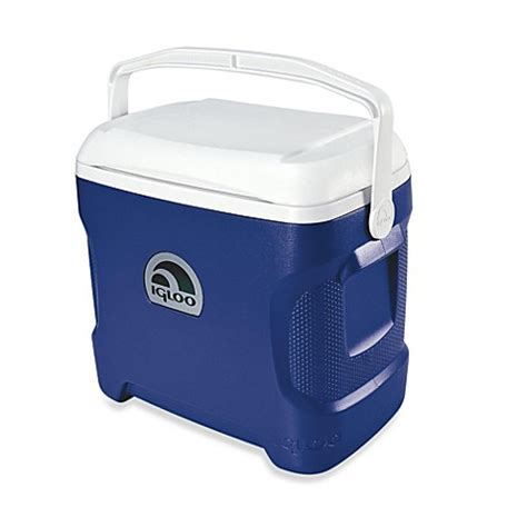 bed bath and beyond cooler igloo 174 contour 30 quart cooler bed bath beyond