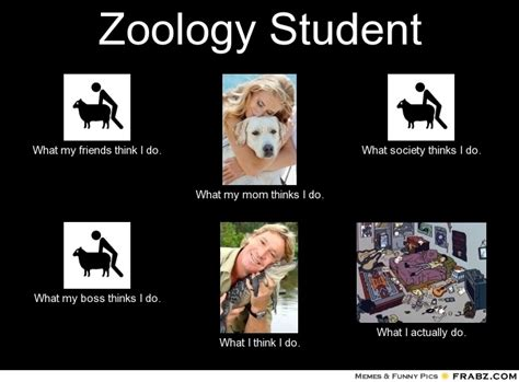 25 best images about zoology on picture books career options and conservation
