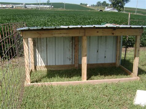 The Goat Shed by New Goat Shed And Weaning Faithful Homestead