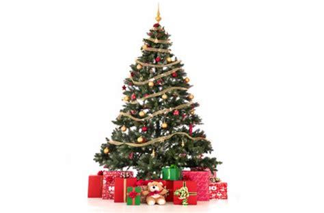 image of christmas tree christmas tree decoration abuja business nigeria