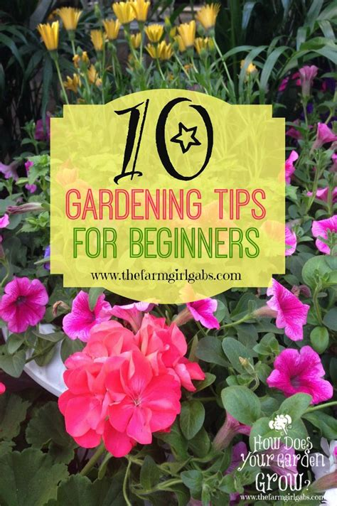 10 simple gardening tips and ideas for beginners spring is almost here it s time to plan your