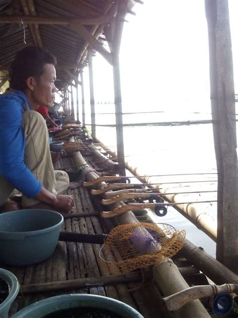mancing ikan nila babon  rakit calingcing waduk cirata