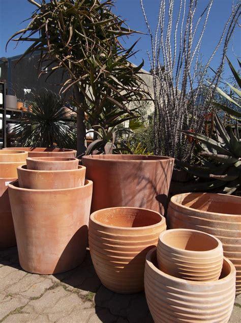 pottery glazed  terra cotta pottery cactus jungle