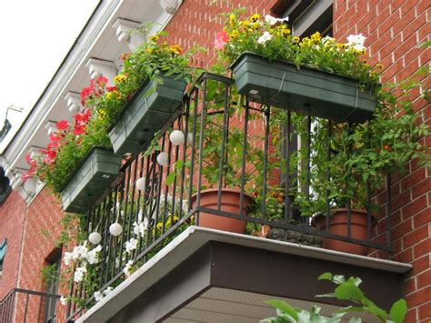 Balcony Gardening Ideas Apartment Balcony Garden Ideas Big Idea Apartment