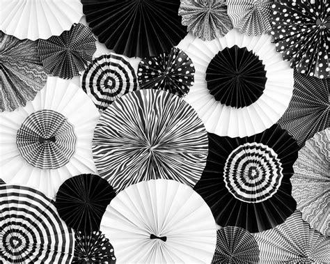 black and white decorations black white birthday the tomkat studio
