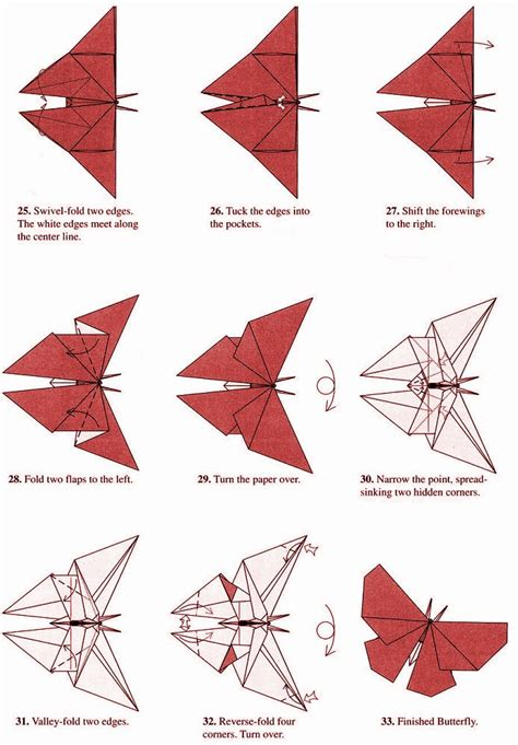 Step By Step Origami Butterfly - how to make origami butterfly www pixshark images
