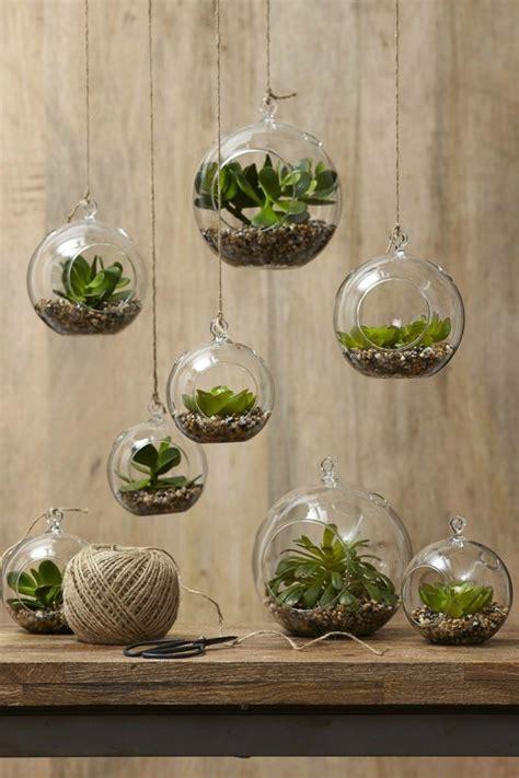 pflanzen deko sukkulenten im glas im blickfang kreative deko ideen mit