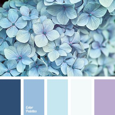 colors that go with baby blue blue color palettes cold shades color matching color