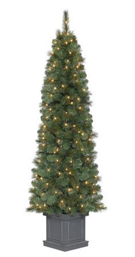 7 pre lit douglas fir christmas tree at menards