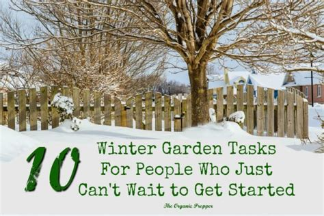 at t winter garden 10 winter garden tasks for who just can t wait to
