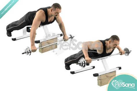 bench barbell row incline bench barbell row
