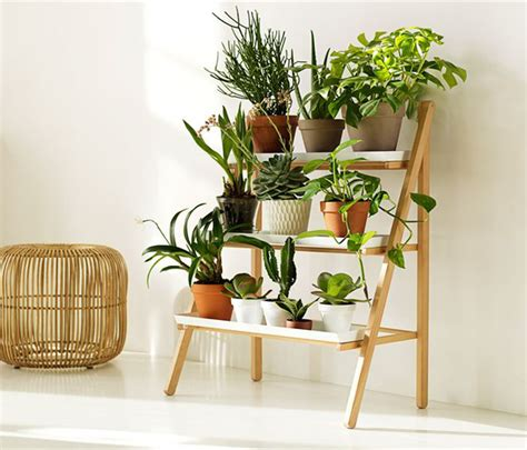 Window Sill Plant Shelf Shelves For Plants Window Sill Pictures To Pin On