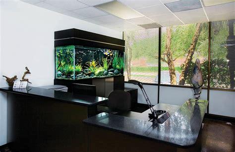 aquarium design kolkata aquanation imagineppm