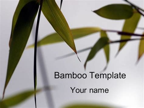 Bamboo Powerpoint Template Japanese Template Powerpoint