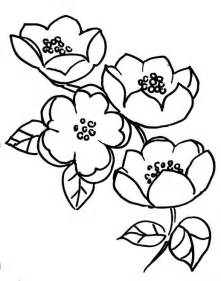 flowers and branches blossoms of apple tree coloring pages fruit sketch template