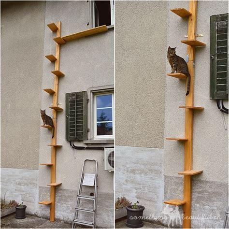 katzentreppe wohnung die besten 25 katzentreppe balkon ideen auf