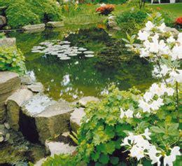 Bassin D Ornement Jardin
