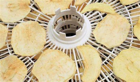 essiccatore per alimenti essiccatore per alimenti fai da te come funziona un