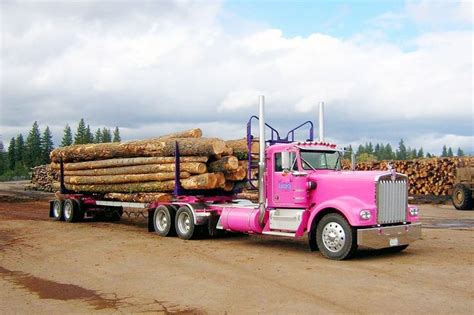 kenwood truck for sale 1974 kenworth w900a logs rigs and biggest truck