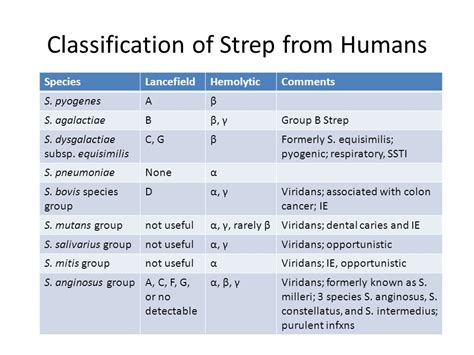 group b strep and c section streptococcus type b in adults communicatefran gq