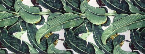 wallpaper martinique banana leaf the original classic martinique banana leaf wallpaper