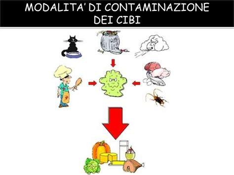 contaminazione degli alimenti alimenti contaminazioni alimentari chimiche fisiche e