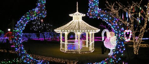 fun free daegu travel best places for christmas in