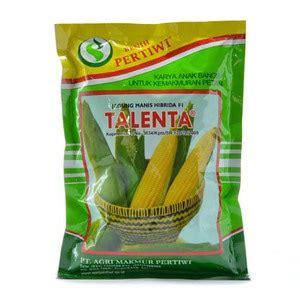 Benih Jagung Manis Harga jual benih jagung manis talenta 250 gram harga termurah