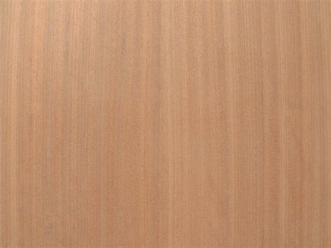 Mahagoni Holz Preise by Pdf Mahogany Plywood Prices Plans Free