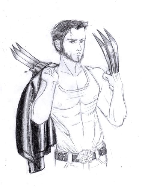 sketchbook how to draw wolverine sketch how to draw wolverine from