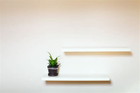 Schlafzimmer Pflanzen by Bildquelle 169 Ditty About Summer
