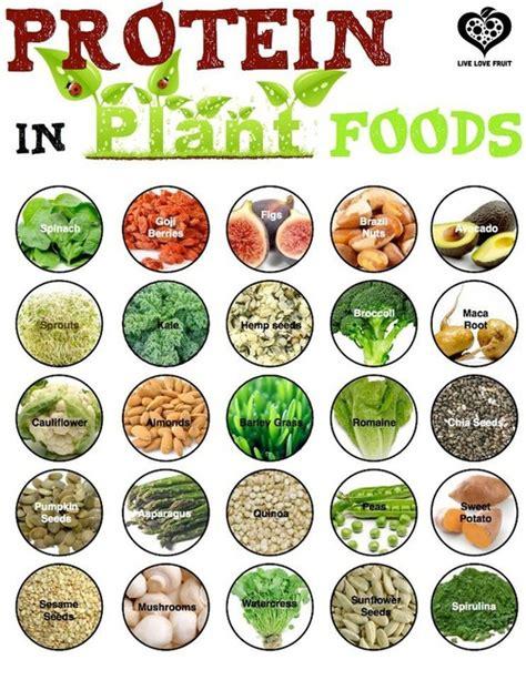 r proteins plants format lvr