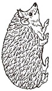 the hedgehog reversed coloring page