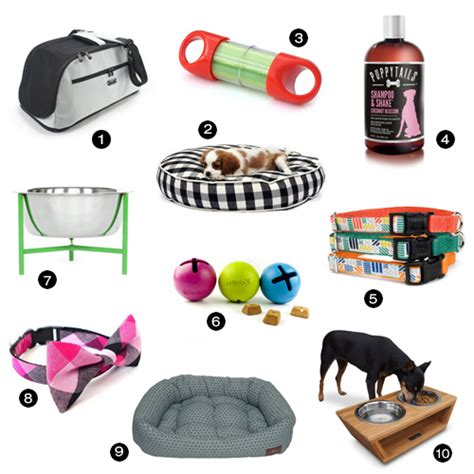 pet stuff modern accessories from petfancy milk