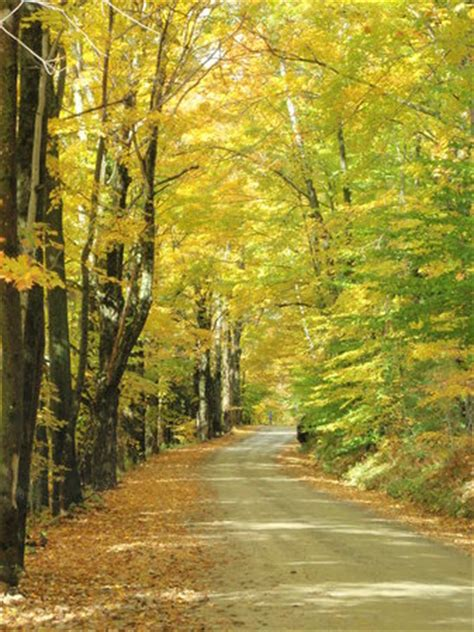 lincoln gap road vermont united states top tips before