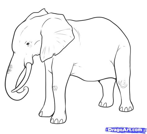 Drawing Elephant by Draw An Elephant Step By Step Drawing Sheets Added By