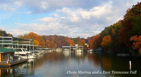 fishing boat rentals knoxville tn 66 best knoxville events images on pinterest