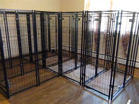 used kennels sheltie boarding an alternative to all breed kennels