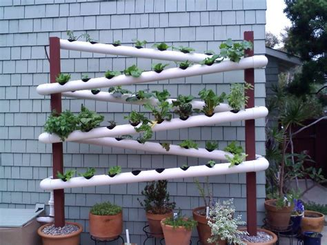 vertical gardening archives page 5 of 11 gardening living