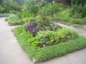 herb gardens plant a medicinal herb garden 171 thegrimeygatsby